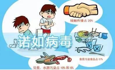 什么是诺如病du?孩zi感染上zen胏huang欤? width=
